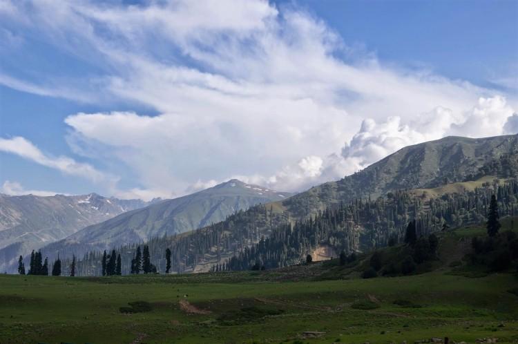 poem, Kashmir, memory