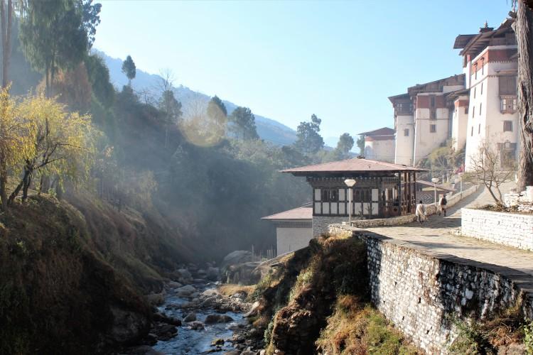 love, sunlight, filter, tree, light, dzong