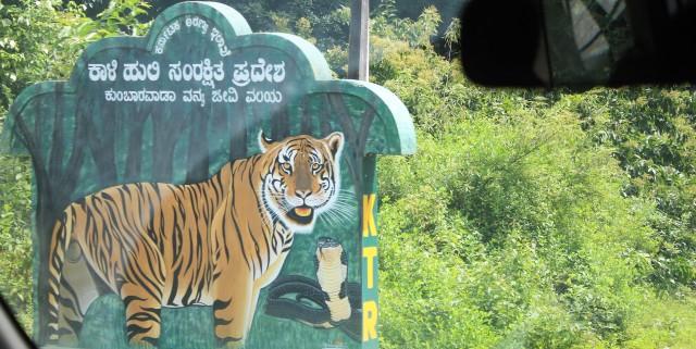 kali tiger reserve, wonder, green belt, smooth road