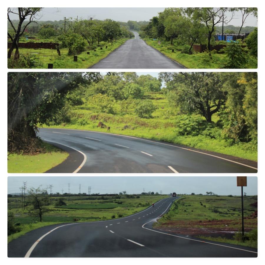 contrast, strike, tar, road, shade, green
