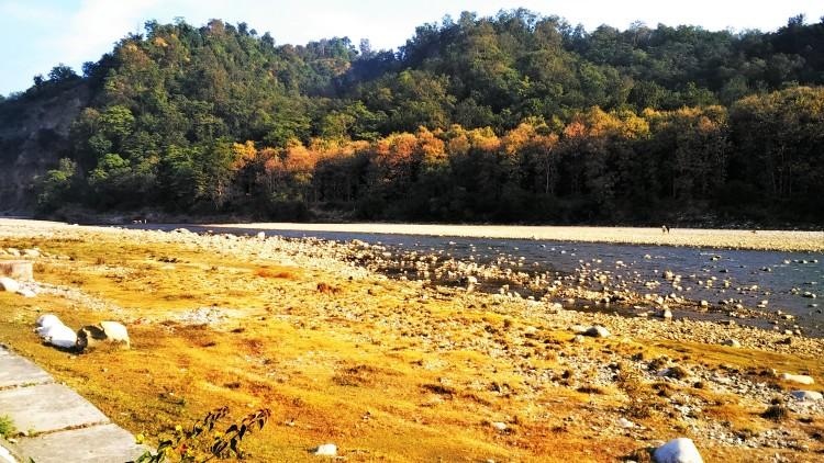 riverview, walk, river