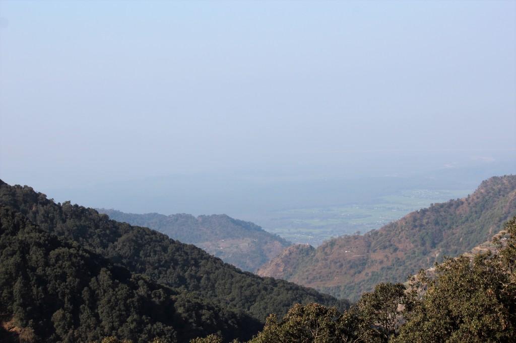 rare sight, mountain, urbanization
