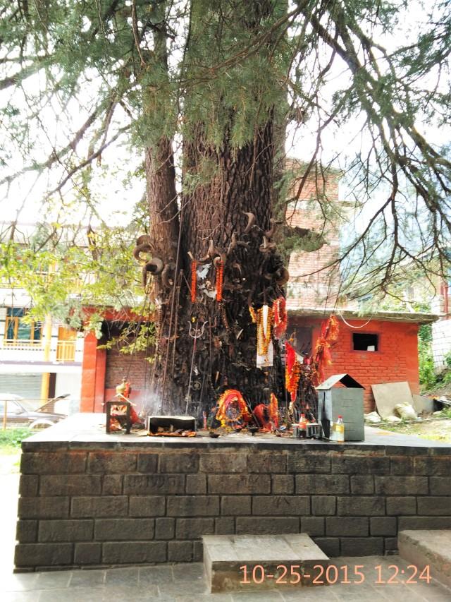 Ghatotkach Temple, Himachal Pradesh, India