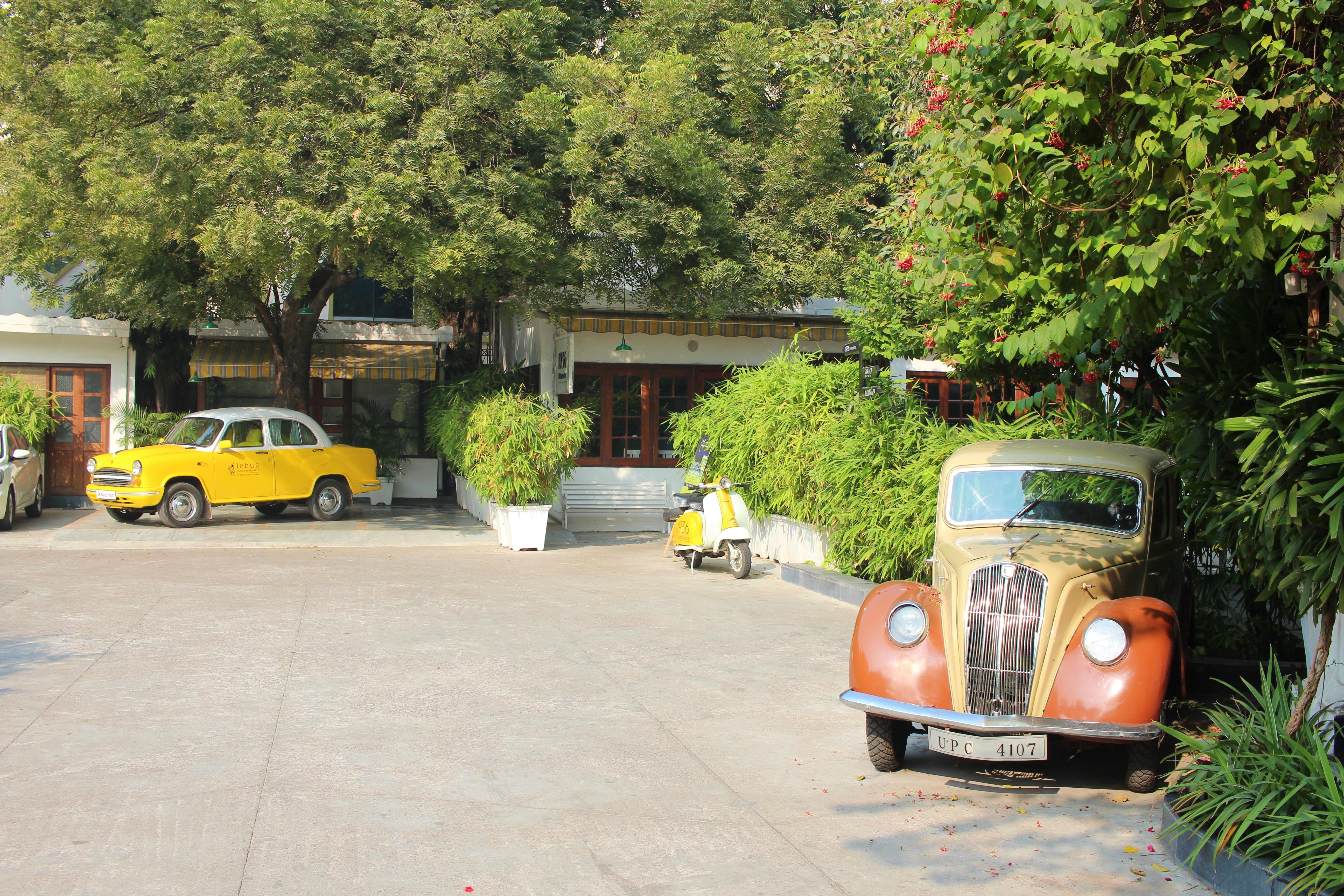 berserk, vintage, lebua, lucknow, uttar pradesh, india