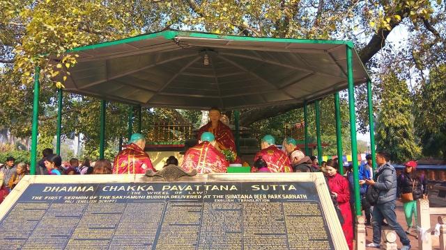 parikrama, bodhi tree, mulagandha kuti vihara, sarnath, varanasi, uttar pradesh, india