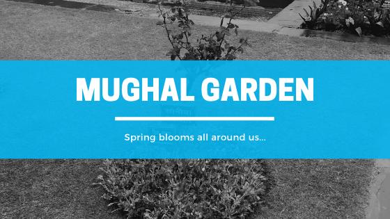 canva, mughal garden